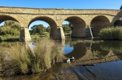 richmond;richmond-bridge;historic-bridge;historic-richmond;historic-town-tasmania;tasmania;tassie;convict-bridge