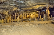 royal-cave;buchan-caves;buchan-caves-reserve;stalagmites;stalactites;shawls;flowstone;cave-formation;cave-decorations;cave;caves-in-victoria;caves-in-australia