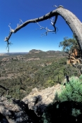 hollow-mountain;vimmera-plains;the-grampians;grampians-national-park;grampians-bushwalk;grampians-hollow-mountain;grampians-views;bushwalking-the-grampians;victorian-national-park;australian-national-park