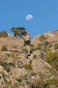 australian-national-park
