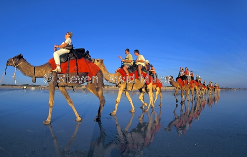 cable beach;broome;cable beach camel ride;broome camel ride;broome attractions;western australia;camels on the beach;camels on cable beach;camel parade;people riding camels