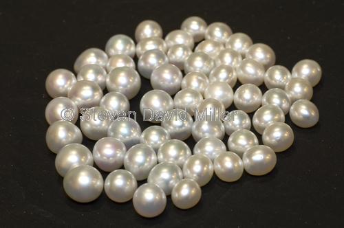 australian south seas pearls;broome pearls;pinctada maxima pearls;south seas pearls;australian pearls;big pearls;large pearls;pearls