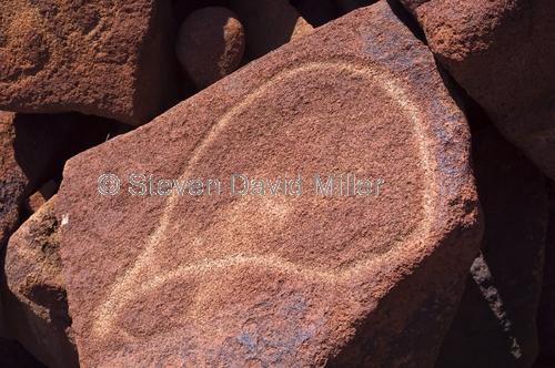 deep gorge petroglyphs;aboriginal rock art;australian aboriginal rock art;aboriginal petroglyphs;aboriginal rock engravings;burrup peninsula;burrup peninsula rock art;dampier archipelago;western australia
