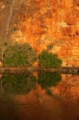 AUSTRALASIA;AUSTRALIA;CLIFFS;COASTS;MANGROVE;NP;PLANTS;REFLECTIONS;RESERVE;SUNSET;VERTICAL;cape-range-national-park;yardie-creek;sandstone-cliff