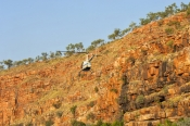 chamberlain-gorge;chamberlain-river;el-questro;the-kimberley;kimberley;far-north-western-australia;sandstone-gorge;sandstone-cliffs;el-questro-helicopter-tour;el-questro-scenic-helicopter-ride