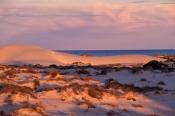 eucla;eucla-national-park;eucla-sand-dunes;eucla-sanddunes;sand-dunes;eucla-sunset;the-nullarbor;eyre-highway;eyre-hwy
