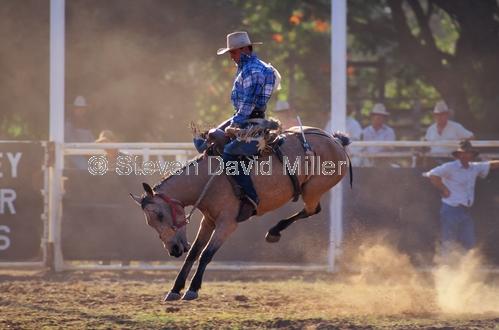 rodeo;kimberley rodeo;kununurra rodeo;kununurra;kimberley;the kimberley;bucking horse;stockman