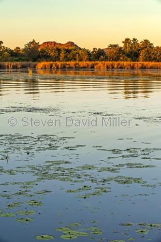 lake kununurra;kununurra;sunset on lake kunururra;sunset on lake;ord river irrigation scheme;kununurra diversion dam;kimberley;western australia