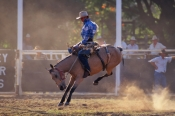 rodeo;kimberley-rodeo;kununurra-rodeo;kununurra;kimberley;the-kimberley;bucking-horse;stockman