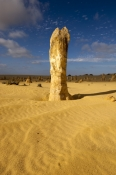 Nambung National Park / The Pinnacles