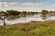 Parry Lagoons Nature Reserve (Kimberley)