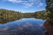 big-brook-arboretum;pemberton-forest-drive;pemberton;western-australia-forest-drive;4wd-pemberton-forest-drive;pemberton-forest-drive-lake;warren-river-dam-lake