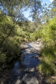 beedelup-falls;greater-beedelup-national-park;pemberton;pemberton-forest-drive;western-australia-forest-drive