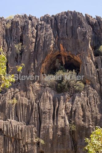windjana gorge national park;devonian coral reef;limestone cliffs;the kimberley;western australia national park;kimberley;kimberley scenery