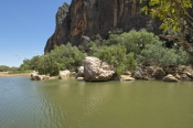 windjana-gorge-national-park;devonian-coral-reef;limestone-cliffs;the-kimberley;western-australia-national-park;kimberley;kimberley-scenery