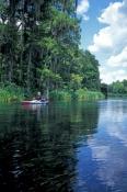 ichetucknee-state-park;itchetucknee-river;itchetucknee-springs;florida-springs;florida-spring-system