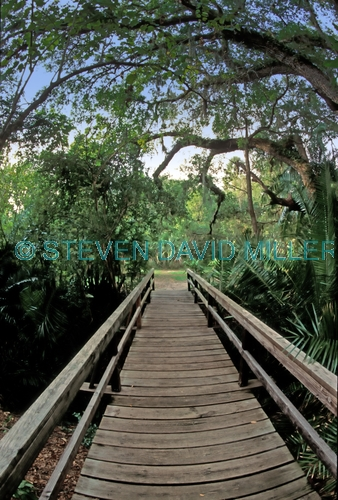 koreshan state historic site;florida state park;southwest florida state park;estero river