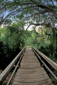 koreshan-state-historic-site;florida-state-park;southwest-florida-state-park;estero-river