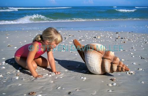 little girl at the beach;girl on the beach;girl on beach;girl at the beach