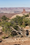Canyonlands National Park