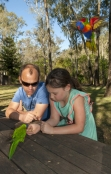 australian-family;girl-feeding-birds
