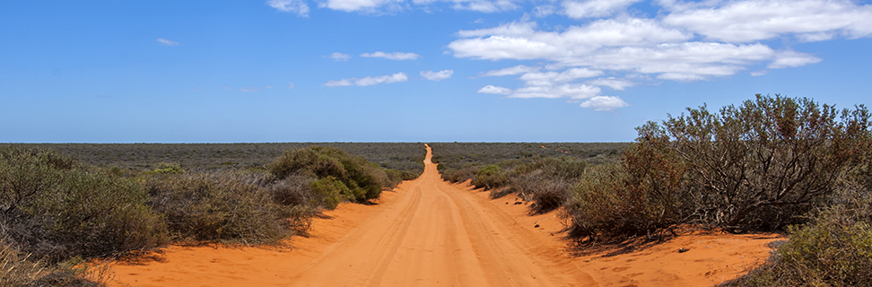 4WD Track in Francois Peron National Park, Western Australia