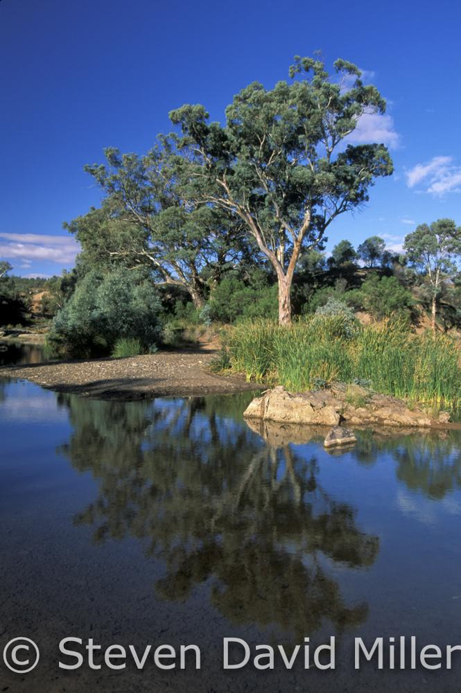 Etina Creek