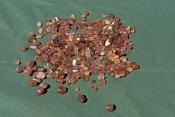 zircon;zircon-gem;gemtree-caravan-park;polished-zircon;yellow-zircon;central-australia-gemstone