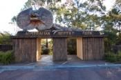 australian-reptile-park-picture;australian-reptile-park;reptile-park;godford-reptile-park;gosford;ne