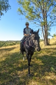 snowy-wilderness;snowy-mountains;snowy-wilderness-property;horse-riding;horseback-riding;woman-on-ho