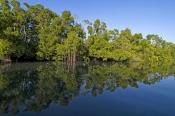 caiman-creek;garig-gunak-barlu-national-park;cobourg-peninsula;arnhem-land;arnhemland;northern-terri