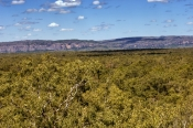 kadadu-national-park;kakadu;gunwarddehwarde-lookout;nourlangie;northern-territory;northern-territory