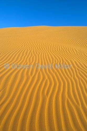 big red;simpson desert;simpson desert crossing;central australia;birdsville;simpson desert sand hill;sand hill;queensland