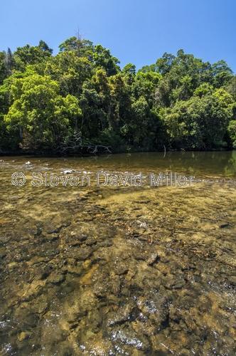 bloomfield river;bloomfield track;wujul wujul;queensland