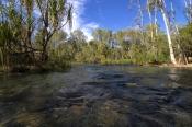 boodjamulla-national-park;lawn-hill-national-park;lawn-hill;riversleigh;gregory-river;river-crossing