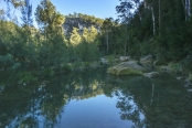 australian-national-parks;carnarvon-gorge-section-of-carnarvon-national-park