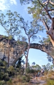 marlong-arch;mount-moffat;carnarvon-national-park;sandstone-arch