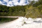 fraser-island;perched-lake;basin-lake;fraser-island-great-walk;fraser-island-national-park;great-san