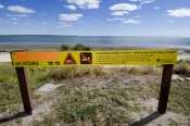 crocodile-warning-sign;karumba;queensland-crocodile-warning-sign;gulf-of-carpentaria