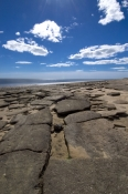 karumba;karumba-point;beach-rock;shell-rock;shell-life;gulf-of-carpentaria