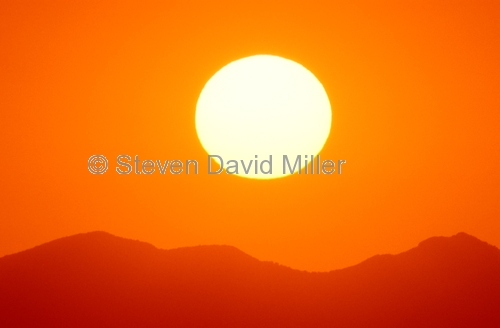 lamington national park;mcpherson ranges;green mountains;oreillys guesthouse;queensland national park;australian national park;red sunset;orange sunset