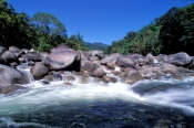 mossman;mossman-river;mossman-gorge;daintree-river-national-park;queensland-national-park;australian