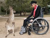 feeding-kangaroo;woman-feeding-kangaroo;woman-in-wheelchair;currumbin-sanctuary;kangaroo-at-currumbi