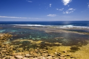 rocky-point;snorkelling-coffin-bay-national-park;coffin-bay-national-park;south-australian-national-