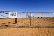 dog-fence;the-dog-fence;dog-fence-board;dog-fence-gate;muloorina;muloorina-station;oodnadatta-track;