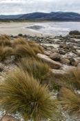 south-bruny-national-park;south-bruny-island;bruny-island;cloudy-bay;cloudy-bay-campground;tasmania;