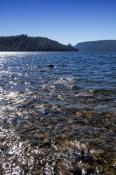 lake-st-clair;lake-saint-clair;cradle-mountain-lake-st-clair-national-park;tasmania;tassie;tasmania-