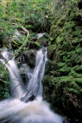 crater-falls;waterfall;tasmania-waterfall;cradle-mountain-lake-st-clair-national-park;cradle-mountai