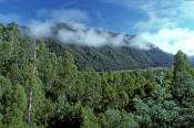 lyell-hwy;lyell-highway;lyell-hwy-scenic-drive;franklin-gordon-wild-rivers-national-park;tasmania-wo
