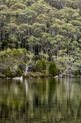 lake-dobson;lake-dobson-road;mount-field-national-park;mt-field-national-park;tasmania;tassie;tasman